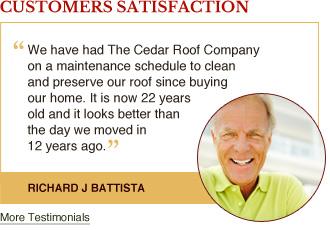cedar-roof-preservation-sidebar